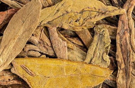 Green tea, dry leaves macro detail - image width 23mm