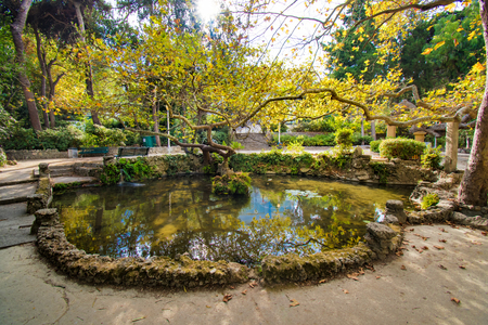 A small pond in Rodini park in city of Rhodes (Rhodes, Greece)