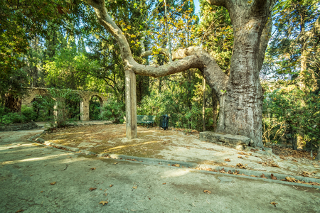 A small aqueduct in Rodini park in city of Rhodes (Rhodes, Greece) Reklamní fotografie