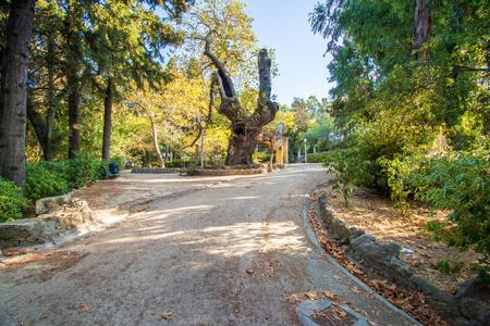 A walk in Rodini park in city of Rhodes (Rhodes, Greece) Reklamní fotografie