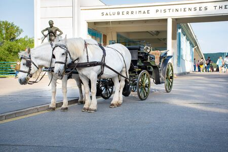 Horse drawn carriage in front of bridge to Spa island in Piestany (Slovakia)