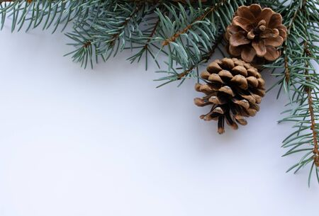 Christmas arrangement with pine twigs and cones isolated on white.