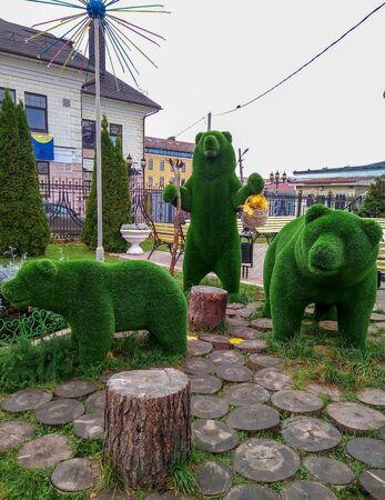 Beautiful bear shaped topiary at zoo on sunny day. Landscape gardening.Rybinsk Russia