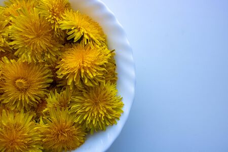 Dandelion flowers in a white plate prepare jam. Dandelions are collected for jam. Imagens