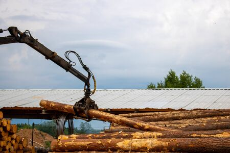 Logging, sawmill. Manipulator for loading wood. The loader of boards and logs works against the background of a stormy sky.