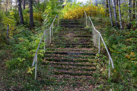 An old staircase overgrown with grass and moss with an iron railing.