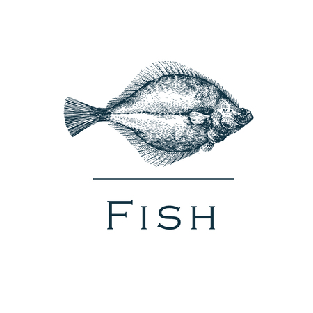 plaice: Seafood Label. Premium illustration with Flounder.