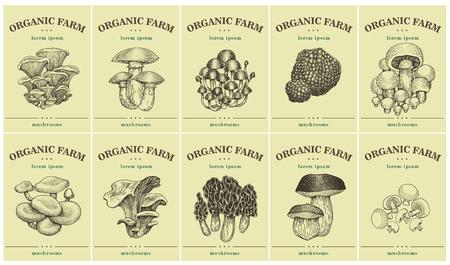 Etykiety z różnymi grzybami. Ustaw szablony metek z cenami dla sklepów i rynków z żywnością ekologiczną. Sztuka ilustracji wektorowych. Zabytkowe. Ręcznie rysowane obiekty przyrody.