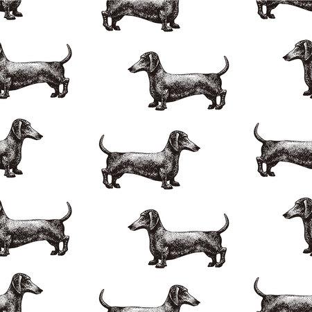 Naadloos vectorpatroon met honden. Vectorillustratie van tekkel. Hand getrokken retro illustratie. Stock Illustratie