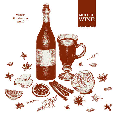 Mulled Wine and spices, orange, cinnamon, anise, clove, ginger hand drawn illustration.