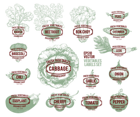 Collection of hand drawn vegetable illustrations, vector illustration in retro style. Labels with various vegetables. Set of  templates for shops and markets of organic vegetarian food.