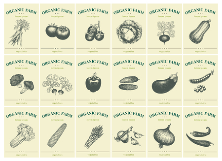 Labels with various vegetables. Set templates price tags for shops and markets of organic vegetarian food. Vector illustration art. Retro. Hand drawn nature objects. Vettoriali