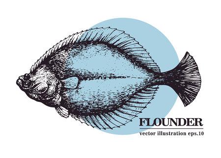 Hand drawn sketch seafood vector vintage illustration of flounder fish.