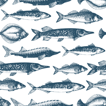 Fish vector seamless pattern for restaurants, emblem, vector image. Retro illustration