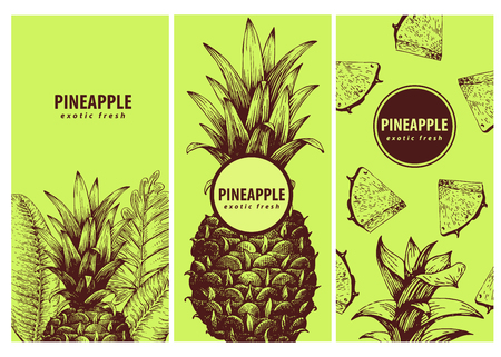 Set of three exotic labels with pineapple. Great for organic food, medicine, perfume design, cooking or gardening. Vintage hand drawn illustrations.
