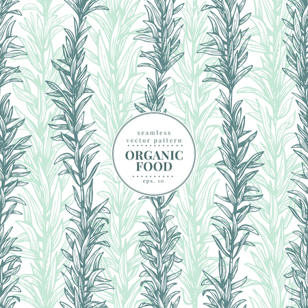 Rosemary. Vector seamless pattern for design menu, packaging and recipes. Hand drawn vintage illustration. Botanical banner template. Engraved style. Illustration