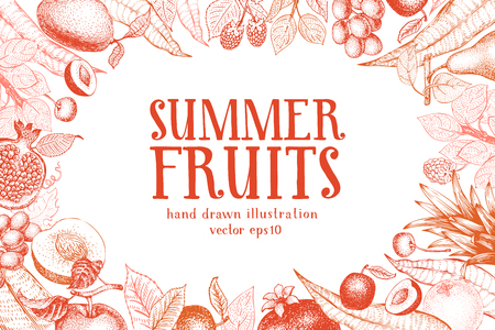 Fruits hand drawn vector background. Banner template. Vintage Fruit engraved style background. Can be use for menu, label, packaging, farm market products.