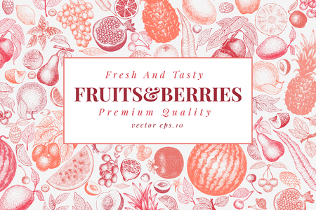 Fruits and berries hand drawn vector illustration. Vintage engraved style design. Can be use for menu, label, packaging, farm market products.