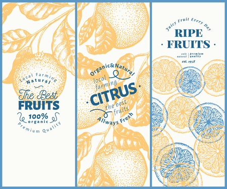 Orange fruit banner set. Hand drawn vector fruit illustration. Engraved style design templates. Retro citrus background. Vettoriali