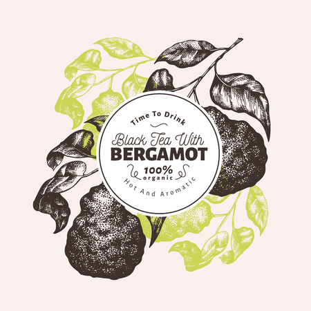 Bergamot branch design template. Kaffir lime frame. Hand drawn vector fruit illustration. Engraved style retro citrus background. Иллюстрация