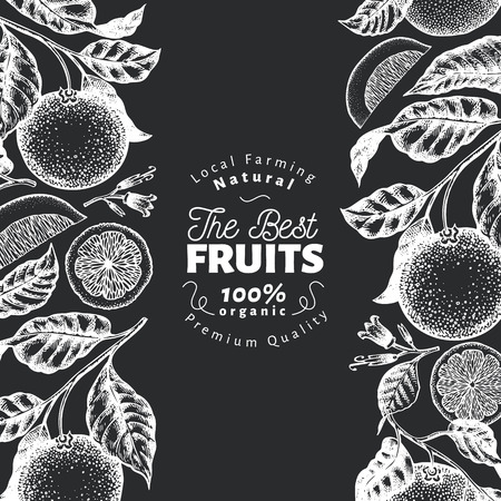 Orange fruit design template. Hand drawn vector fruit illustration on chalk board. Engraved style banner. Retro citrus background.