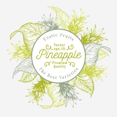 pineapple fruit design template hand drawn vector fruit