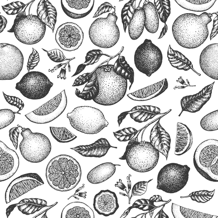 Citrus fruits seamless pattern. Hand drawn vector fruit illustration. Engraved style. Retro citrus background. Vectores