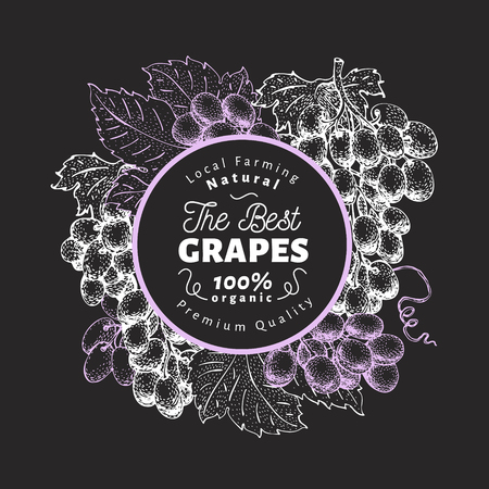 Grape berry design template. Hand drawn vector fruit illustration on chalk board. Engraved style retro botanical background.