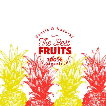 Pineapple fruit design template. Hand drawn vector fruit illustration. Engraved style vintage tropical background.