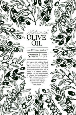 Modello di banner di olivo. Illustrazione vettoriale retrò. Cornice in stile inciso disegnata a mano. Design per olio d'oliva, imballaggi per olive, cosmetici naturali, prodotti per la cura della salute. Immagine in stile vintage.