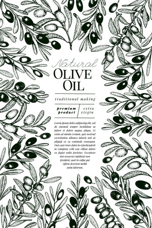 Olive tree banner template. Vector retro illustration. Hand drawn engraved style frame. Design for olive oil, olive packaging, natural cosmetics, health care products. Vintage style image.