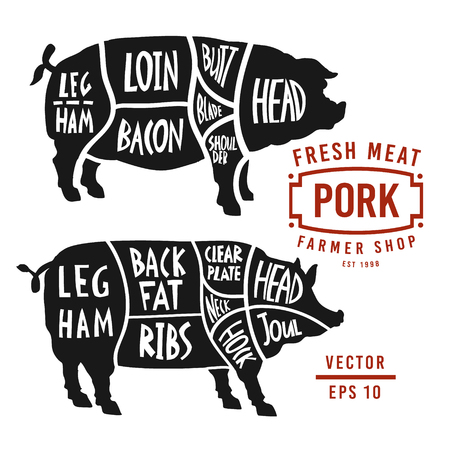 Meat cuts of pork. Vector pig silhouette isolated on white background. Vintage Poster for butcher shop. Poster pork cutting scheme lettering in vintage style. Ilustração
