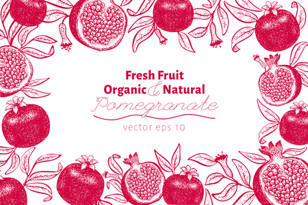 Pomegranate fruit design template. Hand drawn vector fruit illustration. Engraved style retro botanical background. Can be use for design menu, packaging, recipes, market products. Zdjęcie Seryjne - 125338821