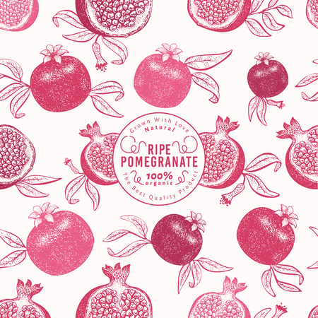 Pomegranate fruit design template. Hand drawn vector fruit illustration. Engraved style retro botanical background. Can be use for design menu, packaging, recipes, market products.