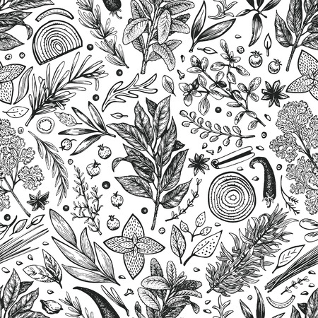 Culinary herbs and spices seamless pattern. Vector background for design menu, packaging, recipes, label, farm market products. Hand drawn retro botanical illustration.