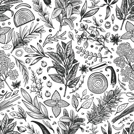 Modèle sans couture d'herbes et d'épices culinaires. Fond de vecteur pour le menu de conception, l'emballage, les recettes, l'étiquette, les produits du marché agricole. Illustration botanique rétro dessinée à la main.