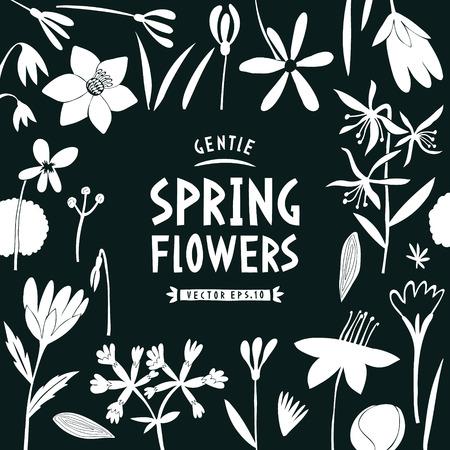 Spring flowers design template. Scandinavian style banner. Hand drawn vector illustrations on dark background. Botanical background.
