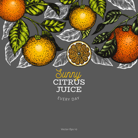 Citrus design templete. Hand drawn vector colour fruit illustration on dark background. Engraved style banner. Retro citrus frame.