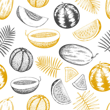 Melons and watermelons with tropical leaves seamless pattern. Hand drawn vector exotic fruit illustration. Engraved style fruit banner. Vintage botanical backdrop