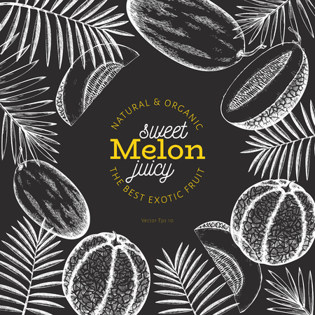 Melons and watermelons with tropical leaves design template. Hand drawn vector exotic fruit illustration on chalk board. Vintage botanical frame.