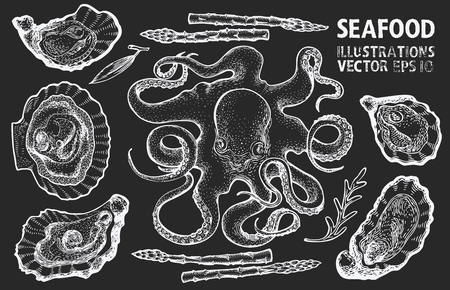Seafood and vegetables vector set. Retro hand drawn illustrations on chalk board. Can be use for restaurants menu, cover, packaging. Vintage background.