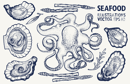 Seafood and vegetables vector set. Retro hand drawn illustrations. Can be use for restaurants menu, cover, packaging. Vintage background. Stock Photo