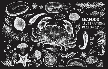 Seafood and spices vector set. Retro hand drawn illustrations on chalk board. Can be use for restaurants menu, cover, packaging. Vintage background.