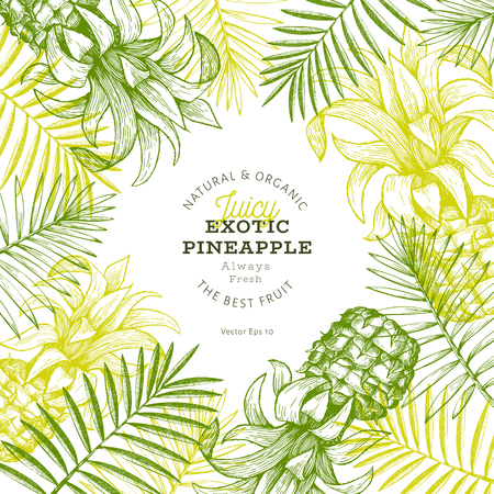 Pineapples and tropical leaves design template. Hand drawn vector tropical fruit illustration. Engraved style ananas fruit banner. Vintage botanical frame.