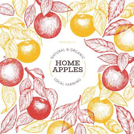 Apple branche design template. Hand drawn vector garden fruit illustration. Engraved style fruit frame. Vintage botanical banner. Stock Photo