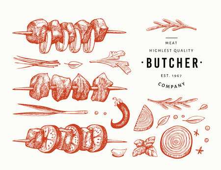 Retro vector meat illustration. Hand drawn shish kebabs, spices and herbs. Barbecue set. Vintage sketch. Can be use for label, restaurant menu.