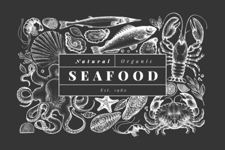 Seafood and fish design template. Hand drawn vector illustration on chalk board. Can be used for design menu, packaging, recipes, label, fish market, seafood products.
