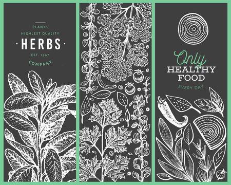 Set di modelli di banner di erbe culinarie dell'albero. Illustrazione botanica vintage disegnata a mano sulla lavagna. Disegni in stile inciso. Sfondo di cibo retrò. Vettoriali