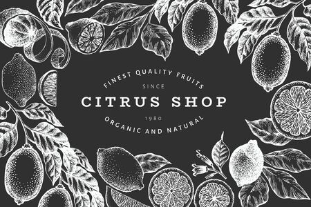 Lemon tree banner template. Hand drawn vector fruit illustration on chalk board. Engraved style frame. Retro citrus background. Vector Illustratie