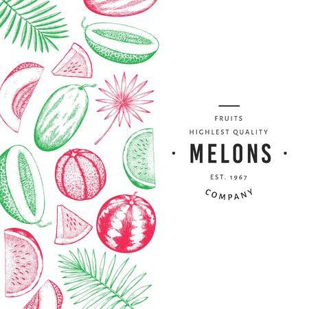 Watermelon, melon and tropical leaves design template. Hand drawn vector exotic fruit illustration. Engraved style fruit frame. Vintage botanical banner.